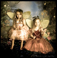 Fairy Examples at Immortal Eye